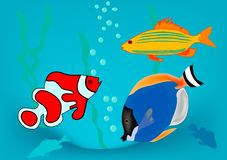 Fish. In ocean on blue background stock illustration