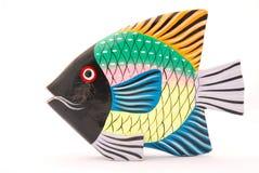 fish Στοκ Εικόνες