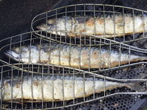 Fish. Tree small Fishes on grill Royalty Free Stock Images