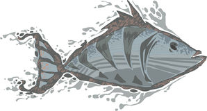 Fish. Fossil fish royalty free illustration