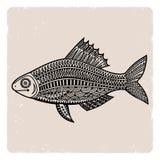 Fish2 Στοκ εικόνα με δικαίωμα ελεύθερης χρήσης
