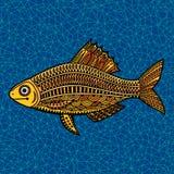 Fish4 Στοκ φωτογραφίες με δικαίωμα ελεύθερης χρήσης