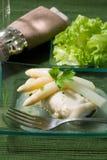 Fish royalty free stock photography