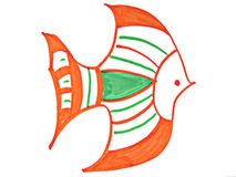 Fish. Has the stripe fish Stock Images