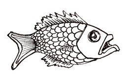 Fish. An ink hand-drawn fish, he's hungry Stock Photo