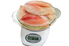 Fish. The fish put on the scales to check its weight Royalty Free Stock Photo