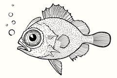 Fish. Abstract fish, hand drawn vector illustration Stock Photos