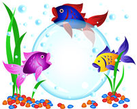 Fish advertisement. Fun cartoon colorful fish advertisement illustration with room for your text in the big bubble: perfect for seafood restaurant, menu Stock Images