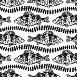 Fish in the algae  seamless pattern. Black color Royalty Free Stock Images