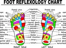 Foot reflexology illustration Royalty Free Stock Photography