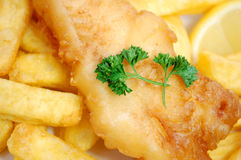 Free Fish And Chips Royalty Free Stock Photos - 15393178