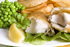 Free Fish And Chips Stock Image - 19450481
