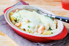 Fish And Pasta With Cheese Sauce Stock Image