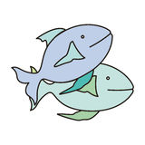 Fish animal design. Fish animal icon over white background. colorful design. vector illustration Royalty Free Stock Photography