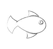 Fish animal isolated icon. Illustration design Royalty Free Stock Photos
