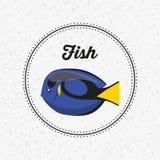 Fish animal poster icon. Vector illustration design Royalty Free Stock Photo