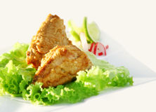 Fish appetizer. Appetizer of fried fish in white background Stock Photography