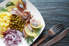 Fish Appetizer On Plate Royalty Free Stock Photos