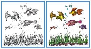 Fish in the aquarium. Coloring fish in the aquarium Royalty Free Stock Photos