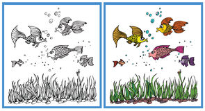 Fish in the aquarium Royalty Free Stock Photos