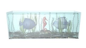 Fish in aquarium composition 3D illustration Stock Photo