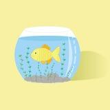 Fish in aquarium. Illustration of fish in aquarium Stock Photos