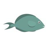 Fish aquarium ornament habitat. Illustration eps 10 Royalty Free Stock Photography
