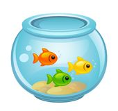 Fish in aquarium. On a white background Royalty Free Stock Photos