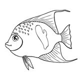 Fish arabian angel black contour on white. Fish arabian angel black contour on a white background . Marine animal. Coloring page book. Vector cartoon Royalty Free Stock Photos