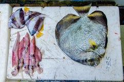 Fish asorti with calamary. Male. Maldives Stock Image