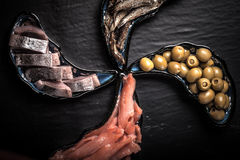 Fish assortment and olives on magic plates on a dark background Stock Images