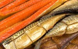 Fish background Stock Image
