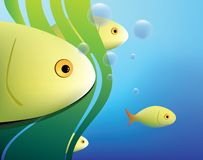 Fish background. Abstract fish background with wateplants and air bubbles Royalty Free Stock Image