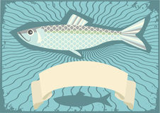 Fish background for text. Royalty Free Stock Photos