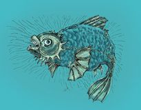 Evil fish. Fish in a bad mood, evil and wild. Drawing in cartoon style Royalty Free Stock Images
