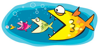 Fish and bait. Vector cartoon of fish catching a bait Stock Images