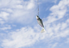 Fish bait with hook against a blue summer sky. Minimalistic image of a fish bate in form of a fish, lifted up against a blue summersky with white clouds Stock Image