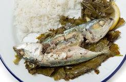 Fish baked in vine leaves from above Stock Photo