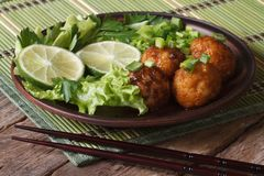 Fish balls in curry sauce with lime and fresh herbs horizontal Stock Photography