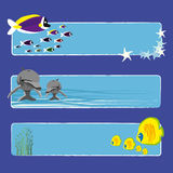Fish banners 1 no text. Three tropical fish banners no text indicate sea world creatures Royalty Free Stock Photos