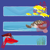 Fish banners 4 no text. Three tropical fish banners no text indicate sea world creatures Royalty Free Stock Images