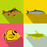 Fish banners set, flat style Royalty Free Stock Photography