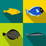 Fish banners set, flat style Stock Photography
