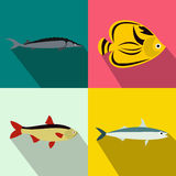 Fish banners set, flat style Royalty Free Stock Image