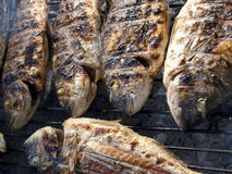 Fish barbecue Royalty Free Stock Images