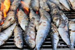 Fish barbecue Royalty Free Stock Photos