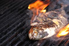 Fish barbecue. Cooking fish at barbecue outdoor stock photos