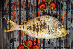 Fish on barbecue. Fish on burning barbecue with orange coals and tomatoes stock photography
