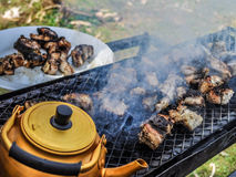 Fish Barbecue. A delicious fish barbecue with friends royalty free stock photography