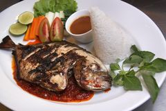 Fish barbecue food menu. With rice asia food royalty free stock image